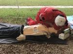 附属金山医院参加区红十字会应急救护定向赛 - 复旦大学