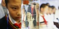 《文汇报》:复旦人体科学馆邀中学生探营,感受生命的伟大 - 复旦大学
