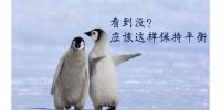 """[文汇网]暴雪来袭,六院医生出品""""企鹅漫步法""""连加拿大朋友都点赞[图] - 上海交通大学"""