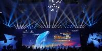 上海海昌海洋公园宣布 今年8月试营业9月28日开门迎客 - Sh.Eastday.Com