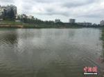"""南""""岛长""""北""""河长"""" 海南生态立省呈现新格局 - News.Online.Sh.Cn"""