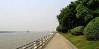 闵行新建两座公交枢纽 多条线路入驻衔接四条轨交线 - 新浪上海