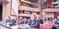 陈竺率中国红十字会代表团参加国际联合会大会、运动代表会议 - 红十字会